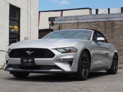 2018 Ford Mustang EcoBoost Premium (Ingot Silver)