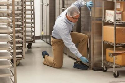 Commercial Pest Management in Palm Beach