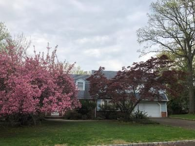 Preforeclosure Property in Mountainside, NJ 07092 - Wood Valley Rd