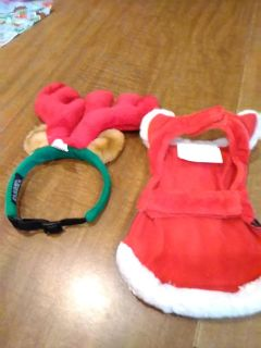 Christmas Santa outfit and reindeer ears for small dogs