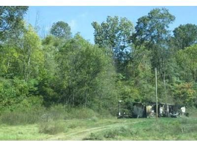 3 Bed 2 Bath Foreclosure Property in Pomeroy, OH 45769 - State Route 143