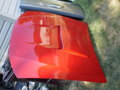 1999-2004 Ford Mustang GT Hood Bonnet W/ Scoop OEM 99 00 01 02 03 04 302 351