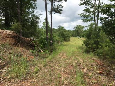 11.3 acres of land in Zavala Texas.