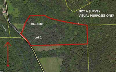 Lot 1 Sweet Hollow RD Middlebury Center, Woods