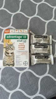 Advantage II for Small Cat, 3 Pack