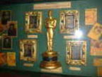 Hollywood Memorabilia Display Case