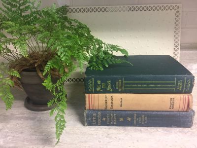3 Antique / Vintage Books for Home Decor. $10 for all 3. CP.