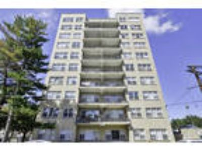 Westminster Towers Apartment Homes - One BR One BA