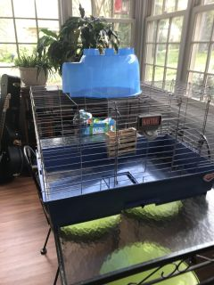 Guinea Pig Cage and accessories