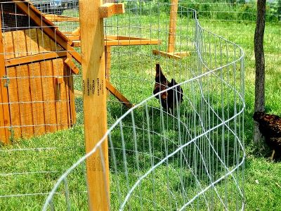 ON SALE- Portable Chicken Yard and Garden Fence Posts with Bases Memphis, TN area
