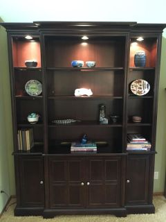 Lighted cabinet display shelving unit