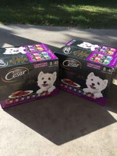 2 boxes of Cesar dog food