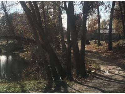 3 Bed 2 Bath Foreclosure Property in Hillsboro, TN 37342 - Newt Vanattia Rd