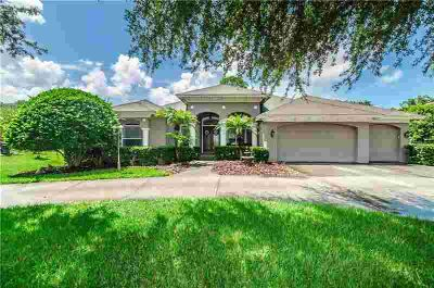 1105 Riverside Ridge Road Tarpon Springs, Custom Move-in
