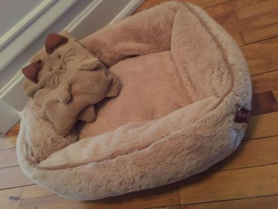 Cat or dog bed