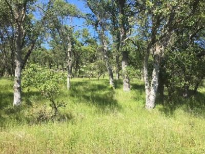 $339,000, 10.5 Acres, Solar Well, Amazing Views