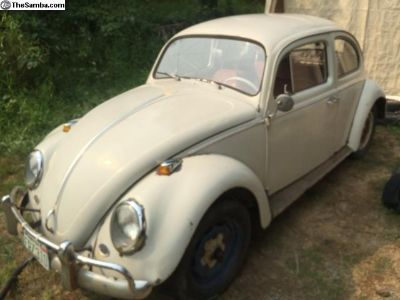 1964 Sedan