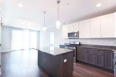 NEW Construction Glenview Luxury Property: 3 bed / 2 bath, In Unit Laundry, 6 months FREE Parking + Pet Friendly!