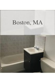 This rental is a Boston apartment Hanover.