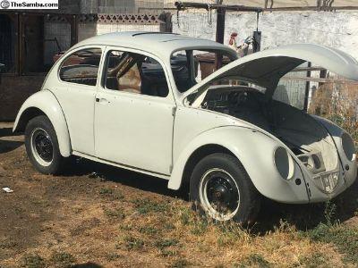 1965 type 1 sunroof