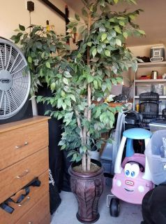 Fake ficus tree with base