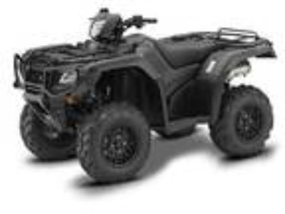 New 2019 Honda FourTrax Foreman Rubicon 4x4 Automatic DCT EPS Deluxe