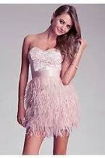 New BeBe Isis Lace Feather Dress (Rose Dust Color)