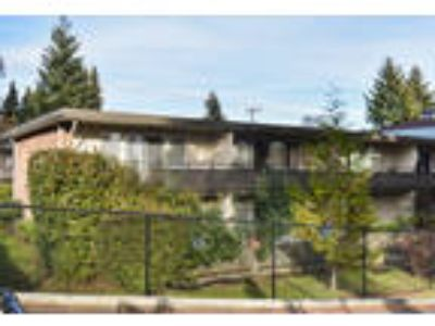 Charming Burien Mid-Century Apartment Home!