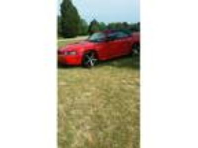 2000 Ford Mustang 2dr Convertible for Sale by Owner