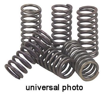 Purchase 2009-2011 SUZUKI TU 250 XK9/L1 EBC CLUTCH SPRINGS CSK158 motorcycle in Ellington, Connecticut, US, for US $9.95
