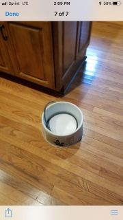 Dog heated water bowl