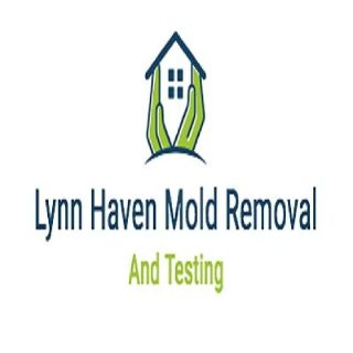 Lynn Haven Mold Removal and Testing
