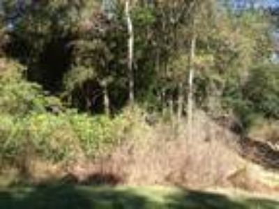 Large Wooded Lot in Established Estate Style Loxley Subdivision