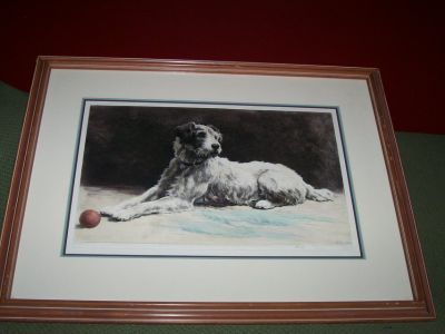 1939 Engraving Hand Colored of Terrier Dog