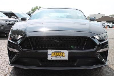 2019 Ford Mustang GT (BLACK)
