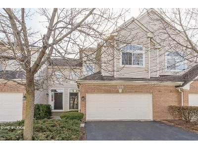 2 Bed 3 Bath Foreclosure Property in Schaumburg, IL 60192 - Halloran Ln