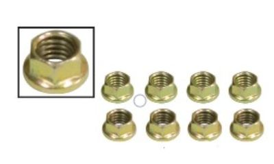 ENGINE INTAKE & EXHAUST NUTS