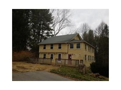 4 Bed 3 Bath Foreclosure Property in Andover, CT 06232 - Route 6