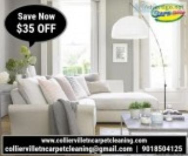 Best Rug Cleaning Services Collierville TN