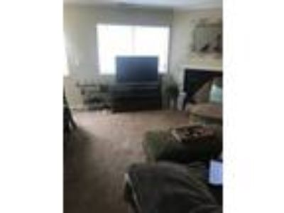 Roommate wanted to share Two BR 1.5 BA Townhouse...