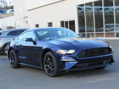 2019 Ford Mustang EcoBoost (Kona Blue Metallic)