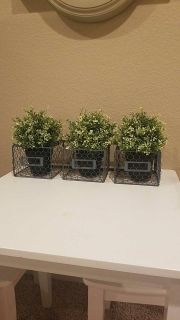 Chicken wire baskets (hangs on wall)