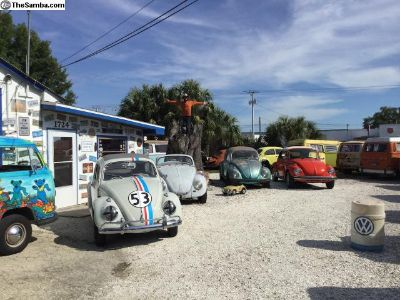 VW Repair, Parts, Service, Restoration Florida