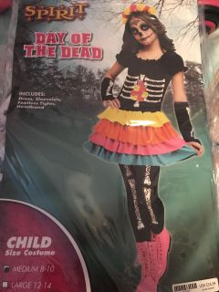 Day of the Dead Costume 8-10