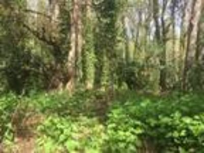 Gorgeous Wooded Lot! Perfect Spot to Build Your Dream Home!