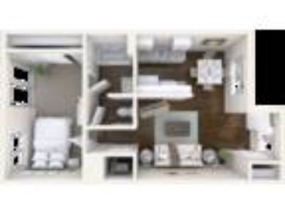 Staci Court Apartments - One BR - One BA