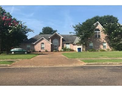 3 Bed Preforeclosure Property in Olive Branch, MS 38654 - Lorrie Ln