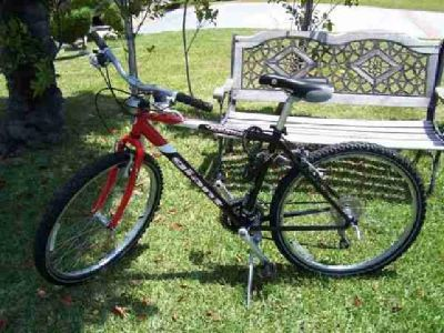 $200 giant upland mountain bike