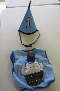 First Birthday adorable Boy Hat and Bib