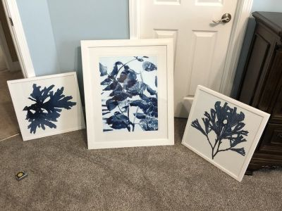 Blue Print White Frame Pictures